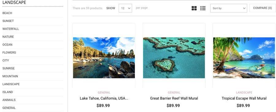 kiếm tiề online với ecommerce website