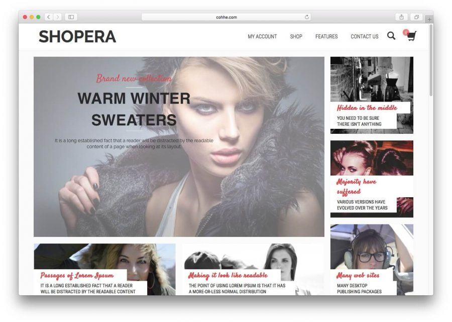 The Shopera demo page.