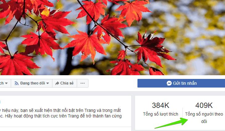 Fanpage không dựa vào nhiều follow để cấp tích xanh