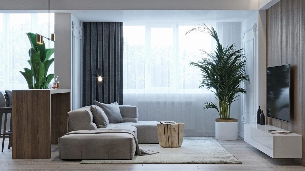 Bố trí cây xanh mang đến sức sống và sự hứng khởi cho không gian phòng khách 20m2