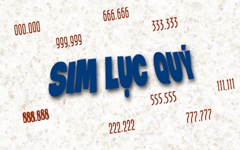 sim-luc-quy-2